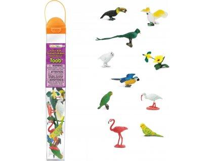 Tuba - Exotické ptactvo