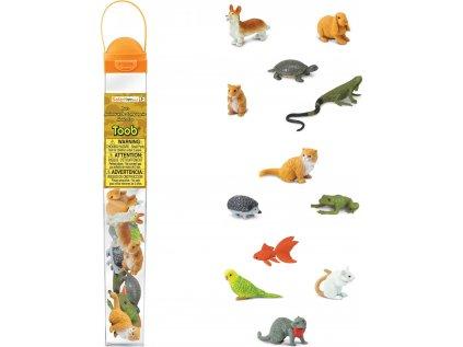 Tuba - Domácí zvířata