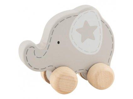 55892 jezdící slon