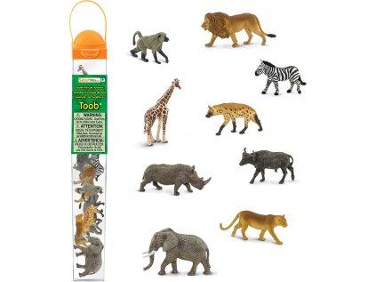 Tuba - Zvířata jižní Afriky
