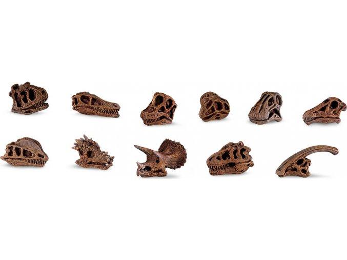 Dinosauří lebky