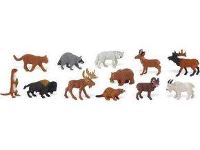 Zvířata Severní Ameriky