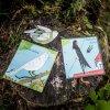Poznávej ptáčky - Učíme se hrou Jitka Musilová