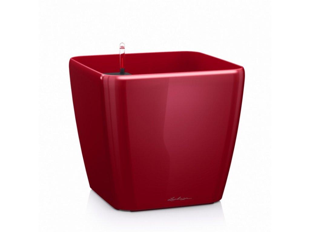 Quadro červená