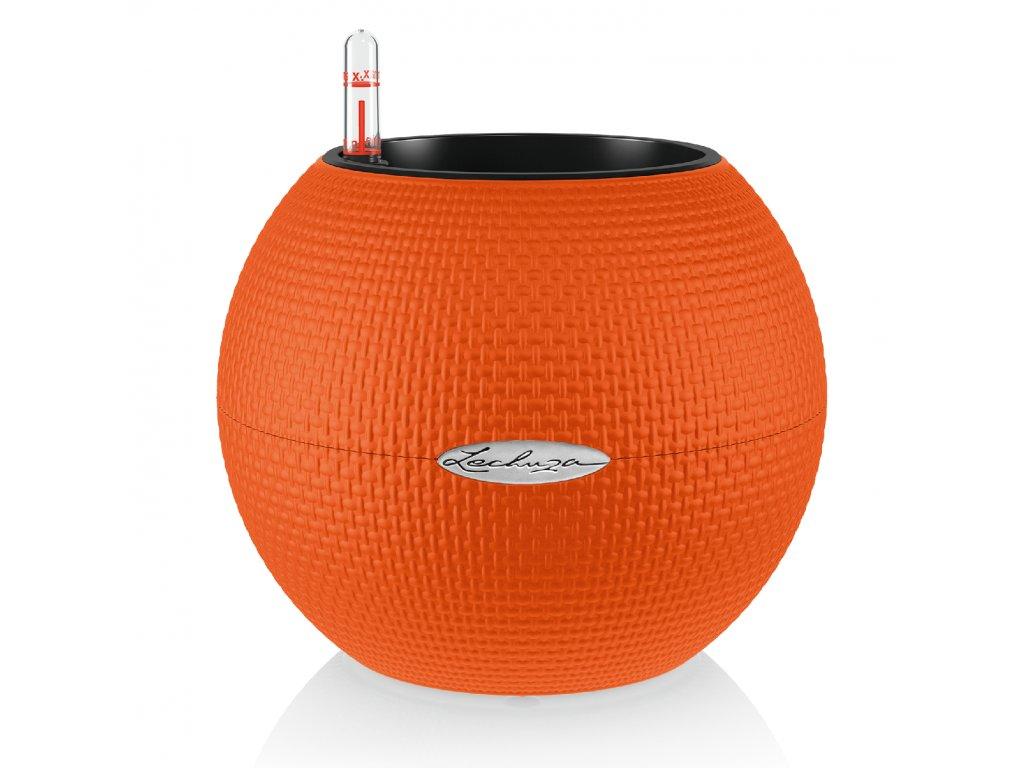 Puro oranžová