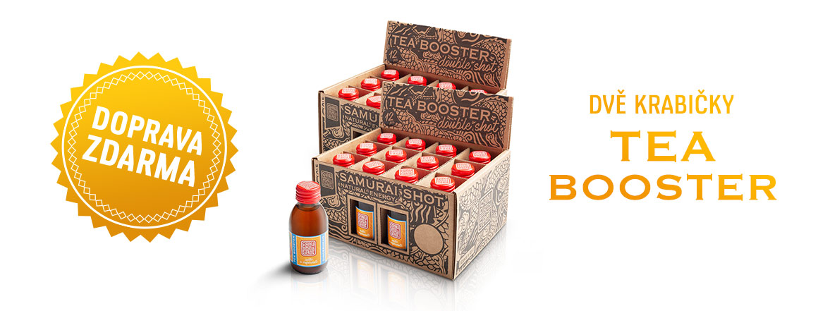 TEA BOOSTER GINGER&MATÉ - PACK 24x100ml