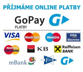 Online platby GoPay