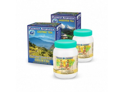 detoxikace traviciho traktu guduchi shunthi 2 annaprash2x
