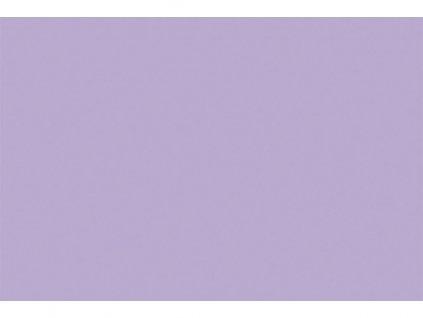 Magnolie fialova rec web