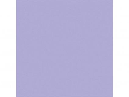 Magnolie fialova sq web