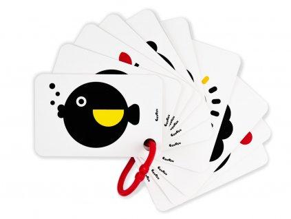Kontrastní karty s klipem - Rybička  + 5 klipů zdarma