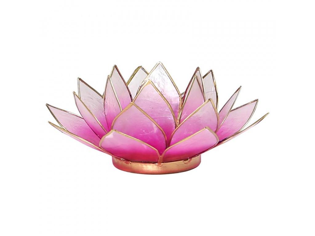 Lotosový svícen růžový