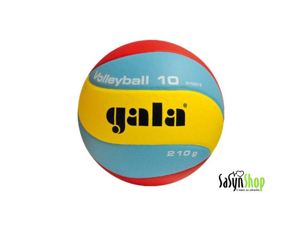 Gala Volleyball 10 BV5551S 210g