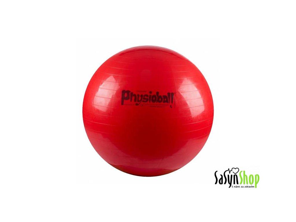 Physioball 95cm