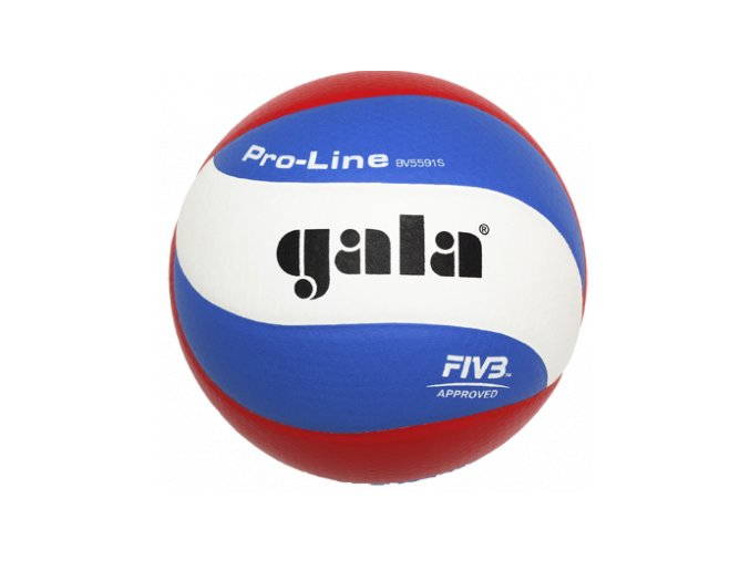 Volejbalový míč GALA PRO LINE BV 5591 S