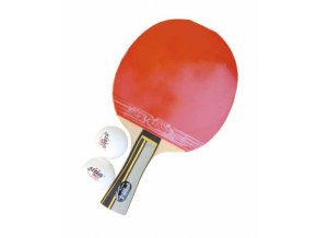Pálka stolní tenis DHS 4002