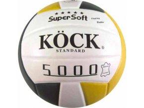 Volejbalový míč STANDARD 5000 pravá kůže