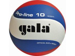 Volejbalový míč GALA PRO LINE 10 BV 5581 S