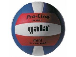 Volejbalový míč GALA PRO LINE mini BV 4051 S