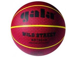 Basketbalový míč GALA WILD STREET BB 7081 R