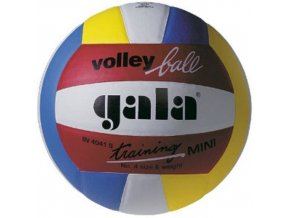 Gala Training Mini BV 4041 S