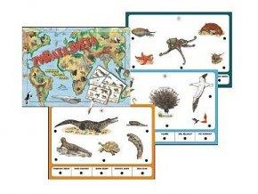 Zvieratá sveta, stolný výuková hra