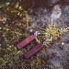 Visací dřevěné náušnice, ručně vyráběné, červeno hnědé, kolekce Smysl_má
