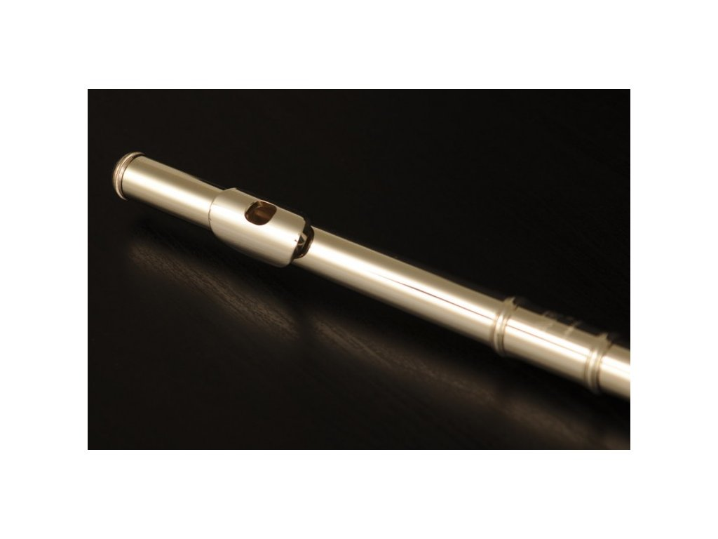 Příčná flétna Arte AFL 171 SL