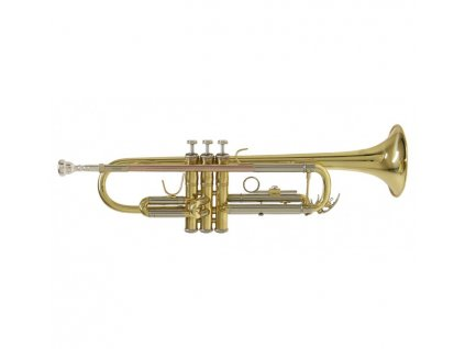 Trubka Bach TR 650