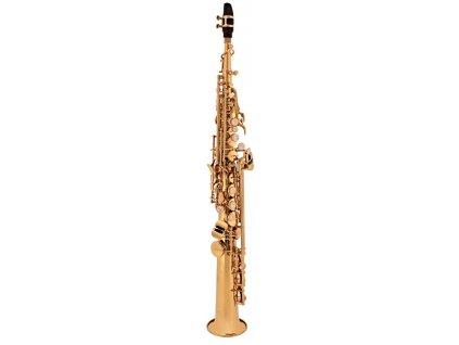 soprano saxophone sf winds school joy