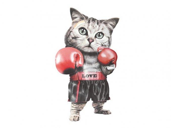 kočka s rukavicemi