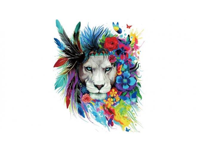 lev barevný