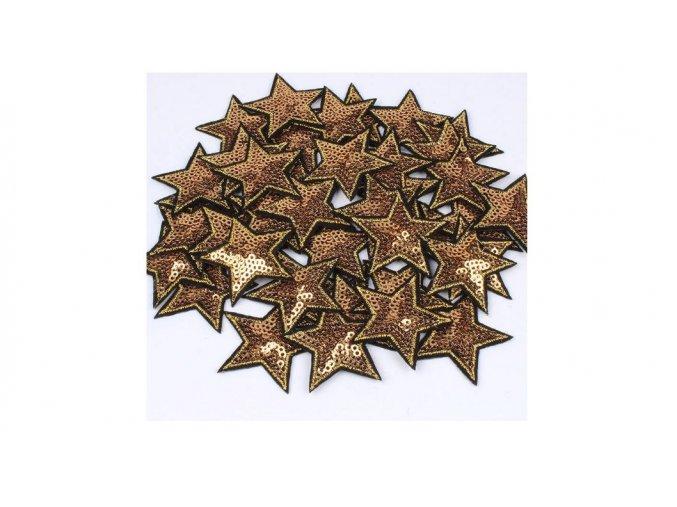 hvězda flitrová zlata mala 2
