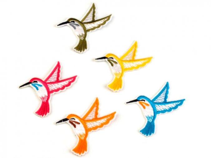 nažehlovačka kolibřík malyý