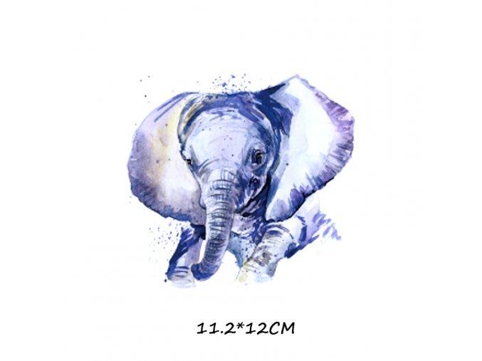 slon barevný 2