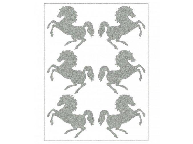 koně reflex