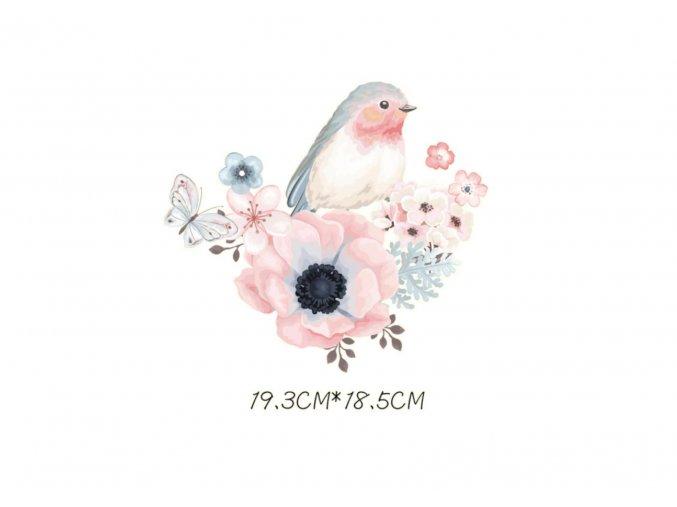 nažehlovací obrazek pltacek s kvety