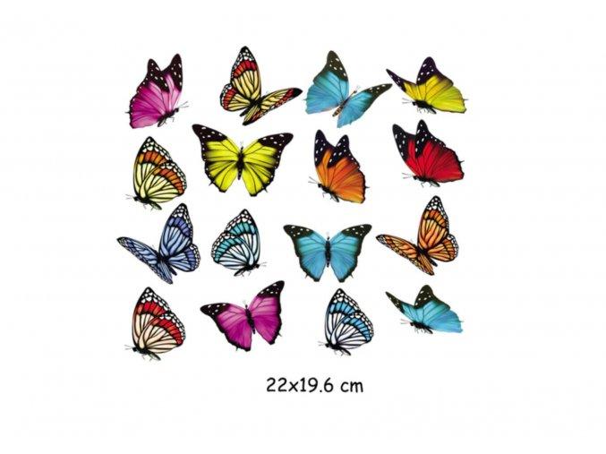 nažehlovací obrázek motýly