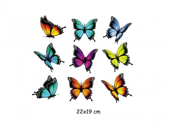 nažehlovací obrázek motýly 2