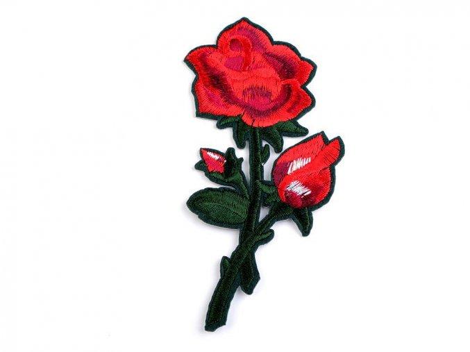 nažehlovačka červená růže