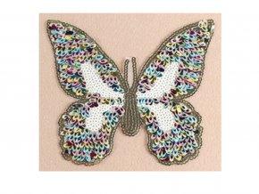 motýl barevné flitry