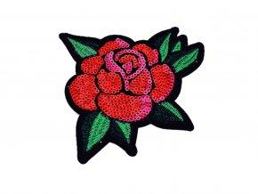 kvet ruze