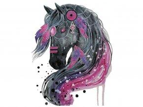 kůň sedofialovy