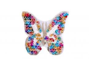 motýl barevný 2