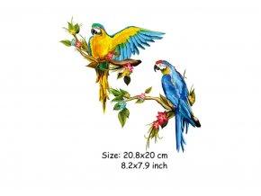 nažehlovací obrázek papoušci
