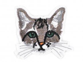 nažehlovačka hlava kočky
