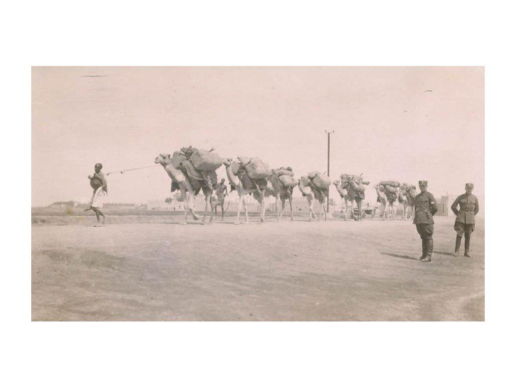 ČSPP na Rusi, Karavana velbloudů, pohlednice, neprošlé