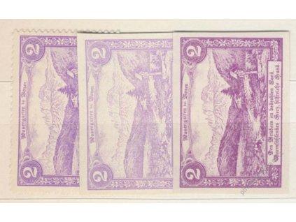 Rosengarten in Bozen, 2h fialová, 1905, nálepka, *