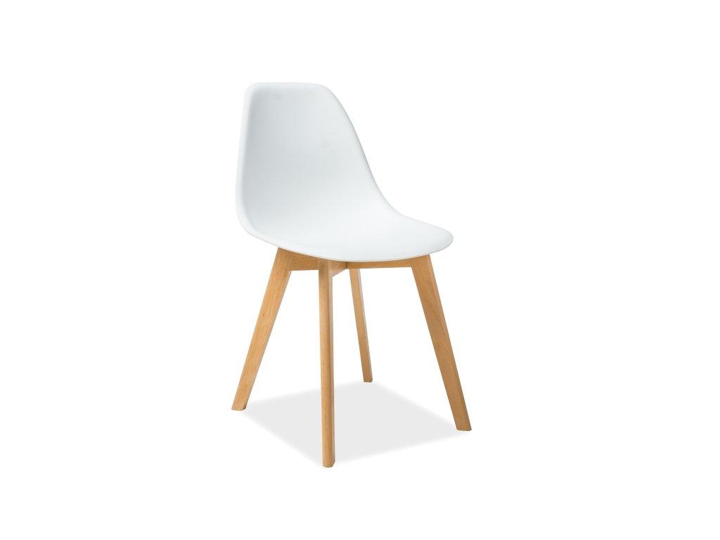 Židle, bílá / buk, MORIS