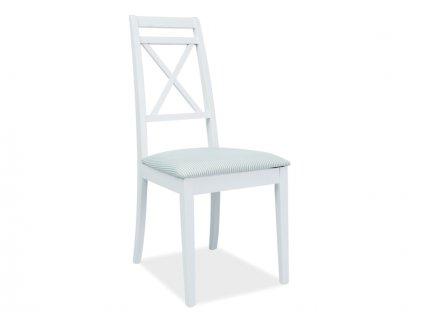 Židle, bílo-zelená/bílá, PC-SC
